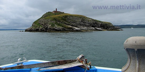 Puffin Island - Anglesey (Wales) UK - Photo by www.mettivia.it